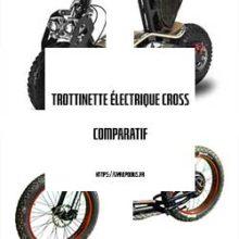 trottinette électrique cross gyropodus